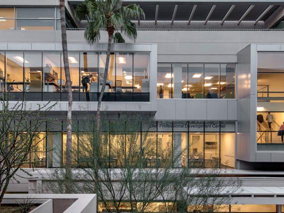 UA Eller College Announces Holders of Anheuser-Busch Chair in Entrepreneurship Studies