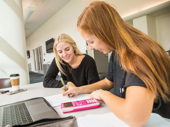 Accounting Undergraduate Programs