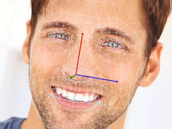 Noldus Facereader image