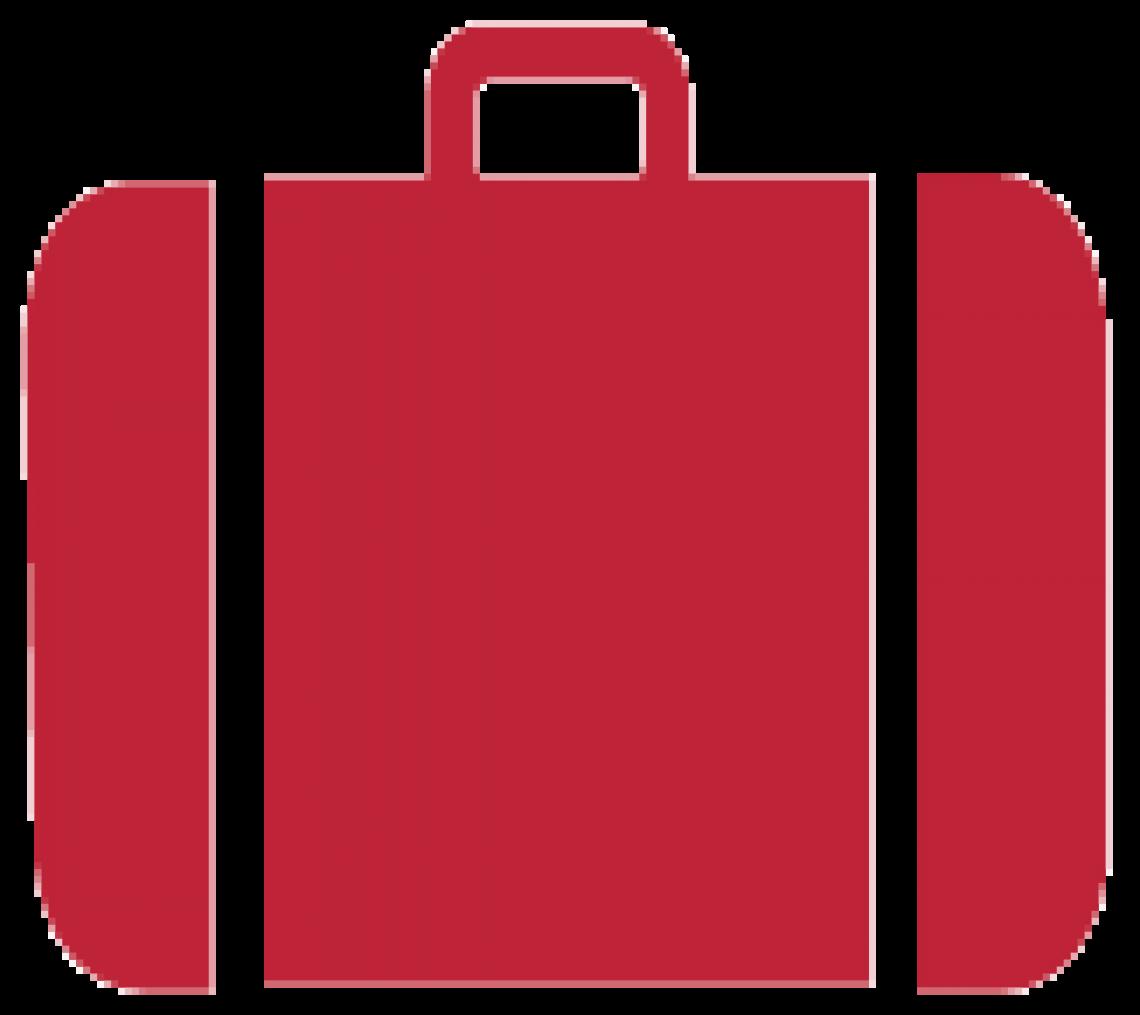 Icon brief case