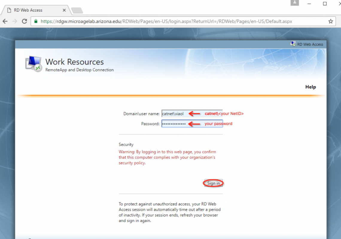 Enter your NetID credentials into the RDS site.